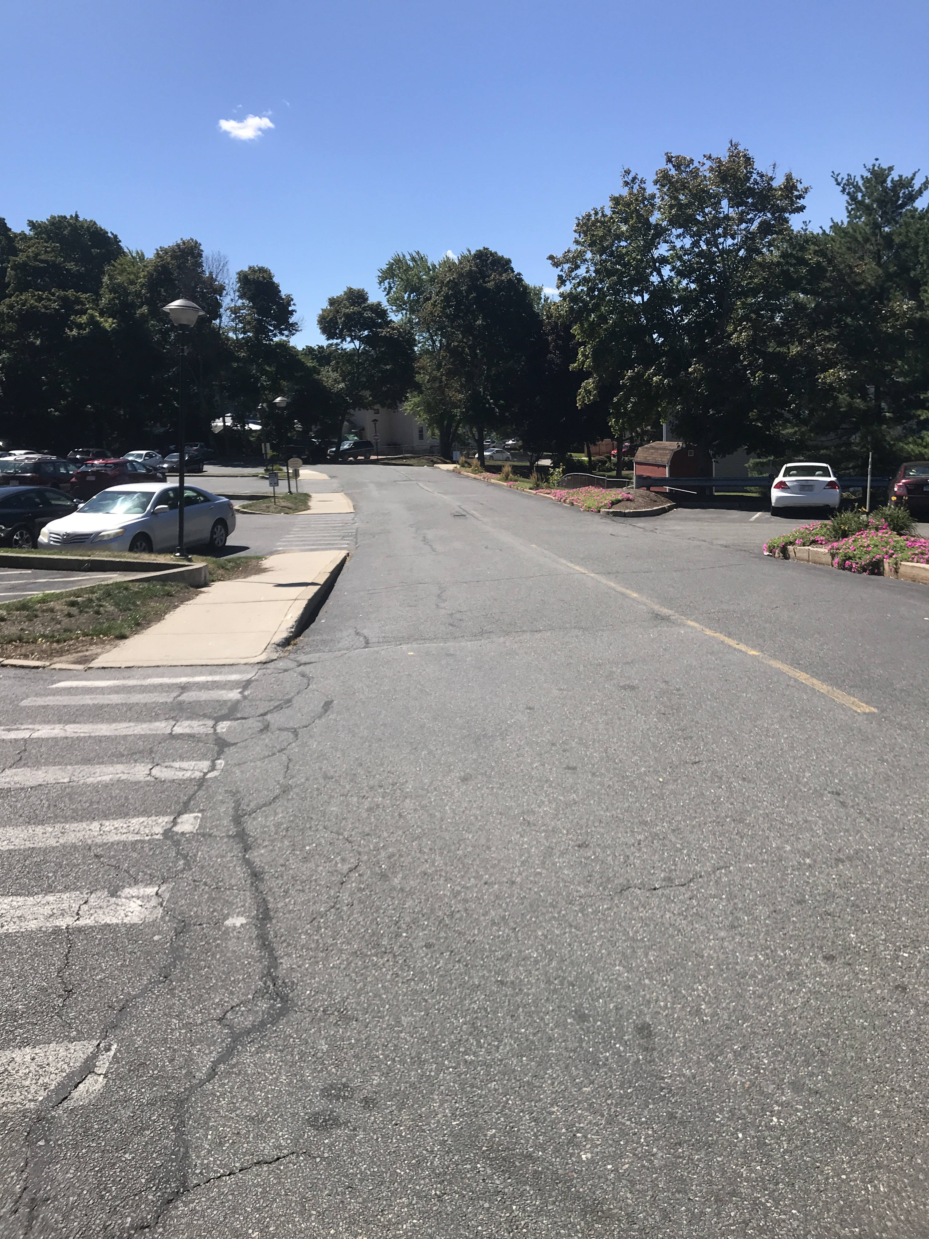 A view from the Salem Heights parking lot, showing the driveway