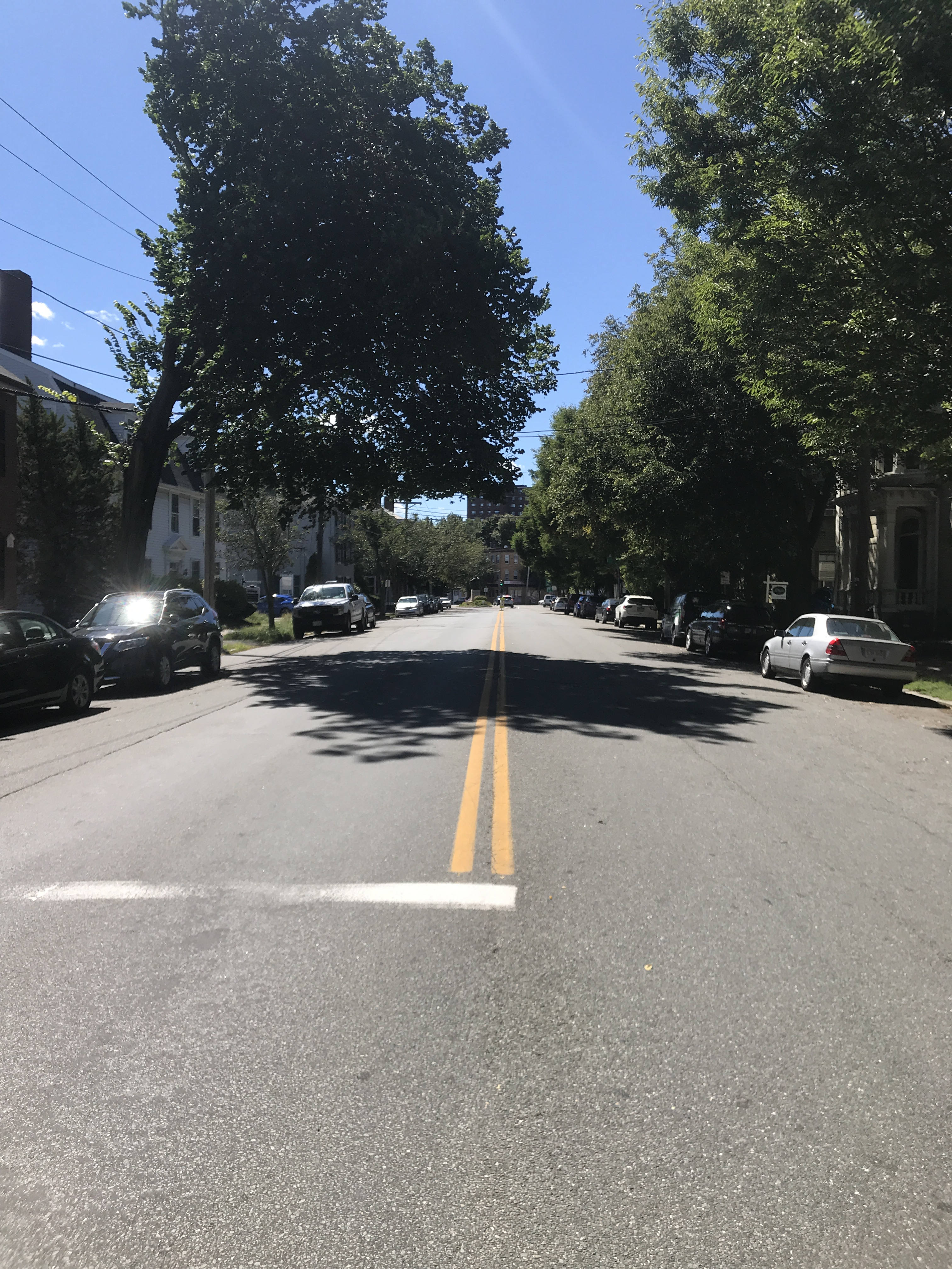 View down the center of Essex Street from Flint Street, looking west. Both sides of the street are lined with trees and cars. In the far distance Salem Heights can be seen above the trees.